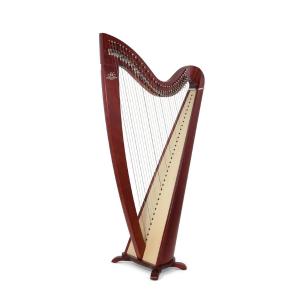 Camac Telenn 34 string WA Music